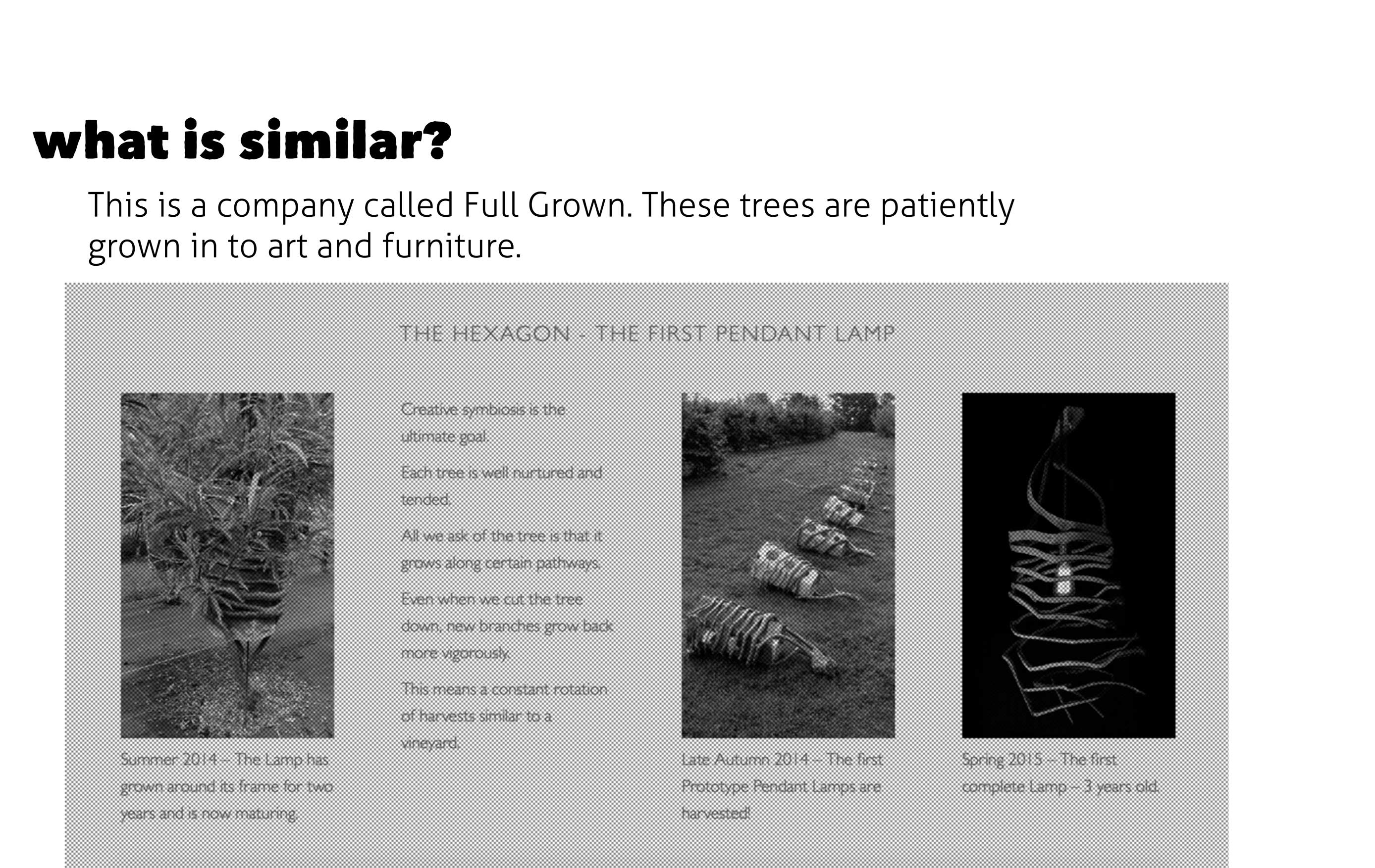 Presentation-3D-Growing-Alice-Wheeler-11