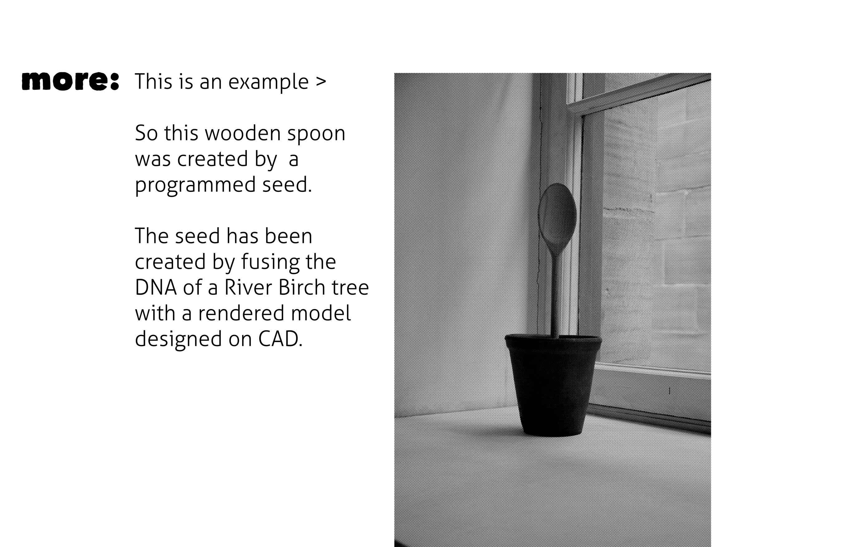 Presentation-3D-Growing-Alice-Wheeler-4